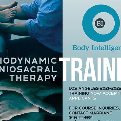 Body Intelligence Social Media Campaigns